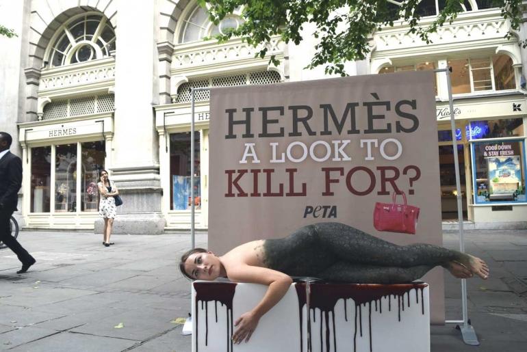 Hermes-Demo-1-small-770x515