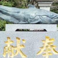神様!女神様!なまず様!?【なぜ九州でナマズが神とそこまで崇められたのかFAITH徹底追及!】