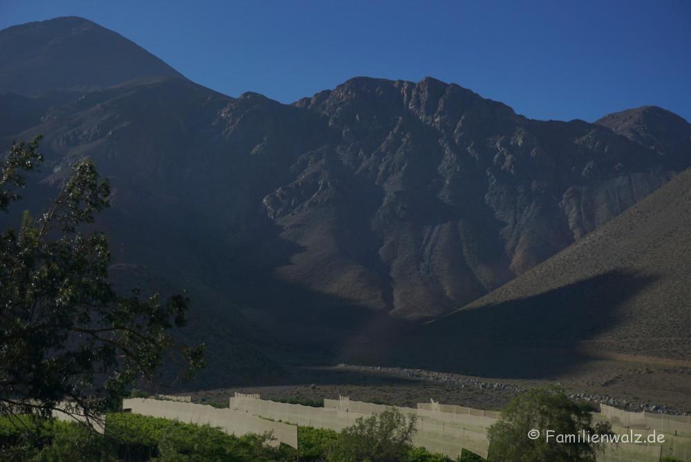 Dem Herzen folgen, Coquimbo streifen und in Pisco Elqui für immer bleiben wollen