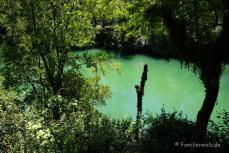 Die Laguna Verde im Nationalpark Vicente Rosales