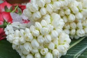 Blumen-Glück am Wegesrand