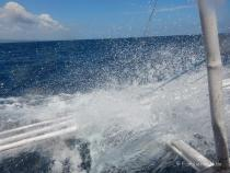 Auf dem Weg nach Apo Island