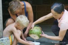 Schlachtung einer Kokosnuss