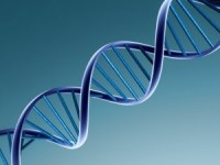 DNA for family history