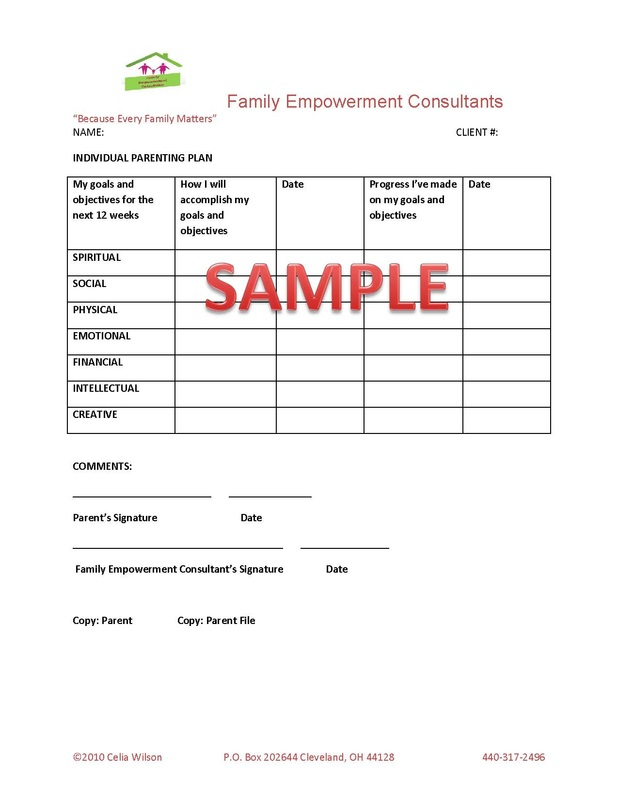 Sample Individual Parenting Plan - Family Empowerment Consultants - parenting plan example