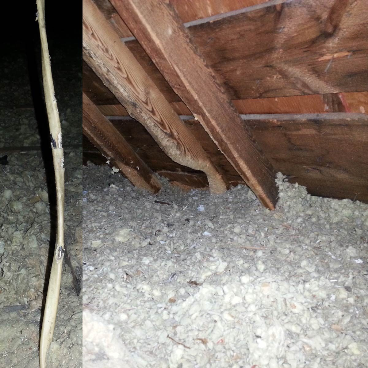 Attic Lift Diy 110 Super Scary Home Inspector Nightmare Photos Family Handyman