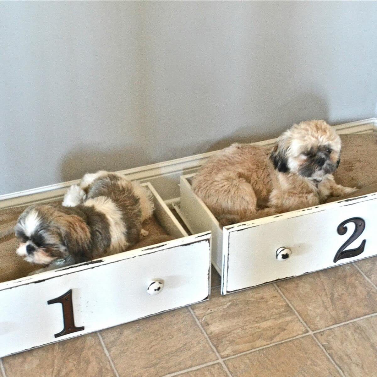 Dog Beds Pet 14 Adorable Diy Dog Beds The Family Handyman