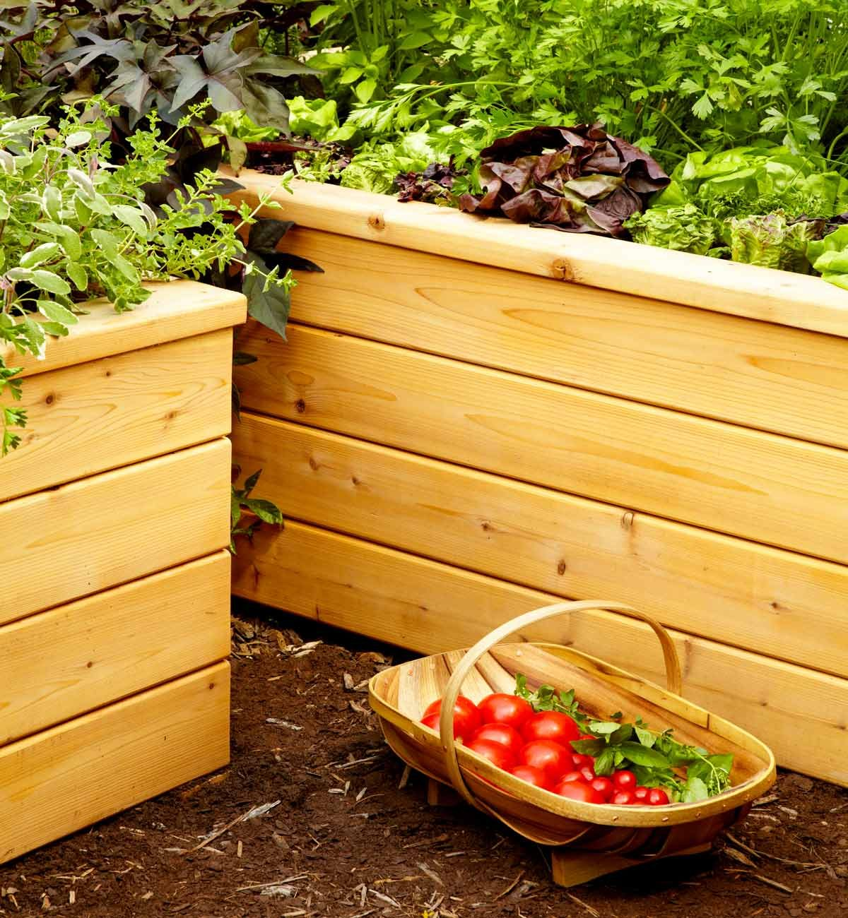 Make Self Watering Planters Build Self Watering Planters The Family Handyman