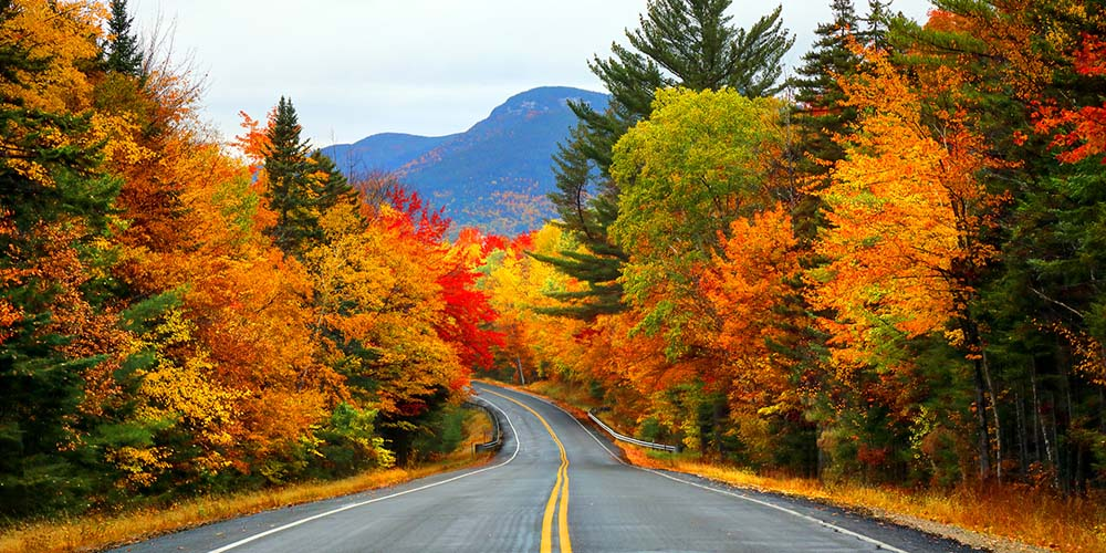 Follow The Foliage This Fall With Four New England Road Trips