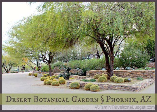 Desert Botanical Garden Family Travels On A Budget