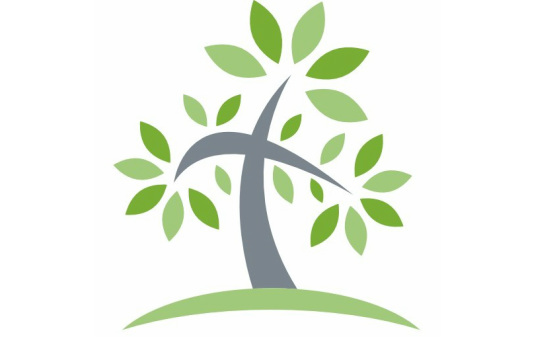 The Family Tree Project, LLP - Home