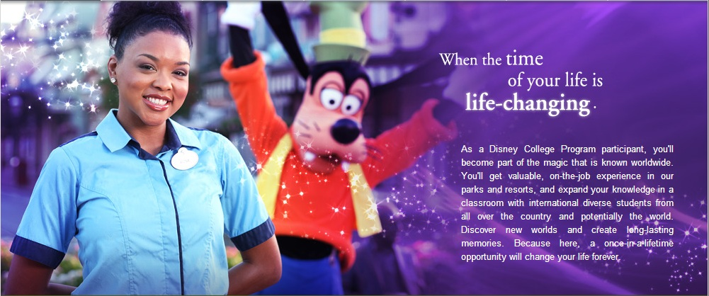disney college program accepted resume example