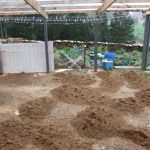 We covered the carport area with packing sand