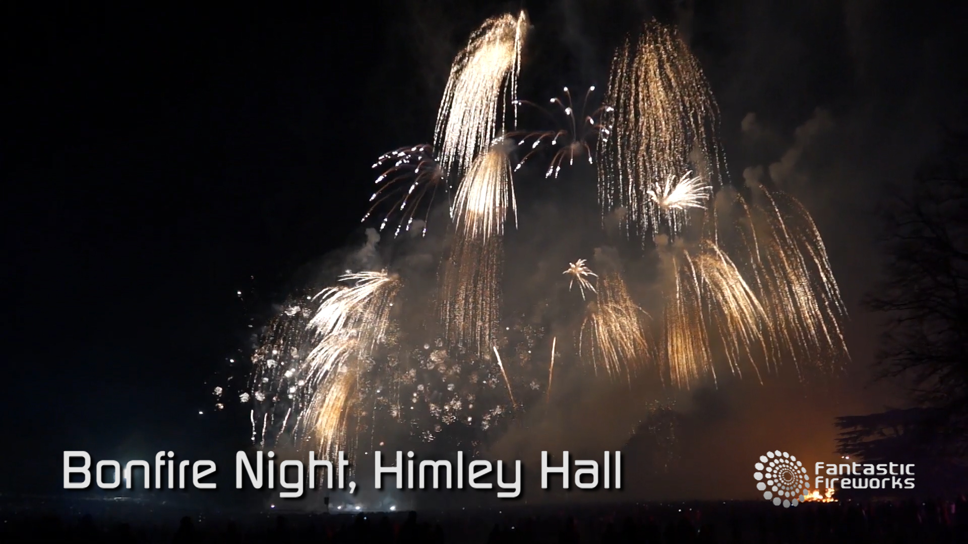 Professional Fireworks Displays | Himley Hall Bonfire Night