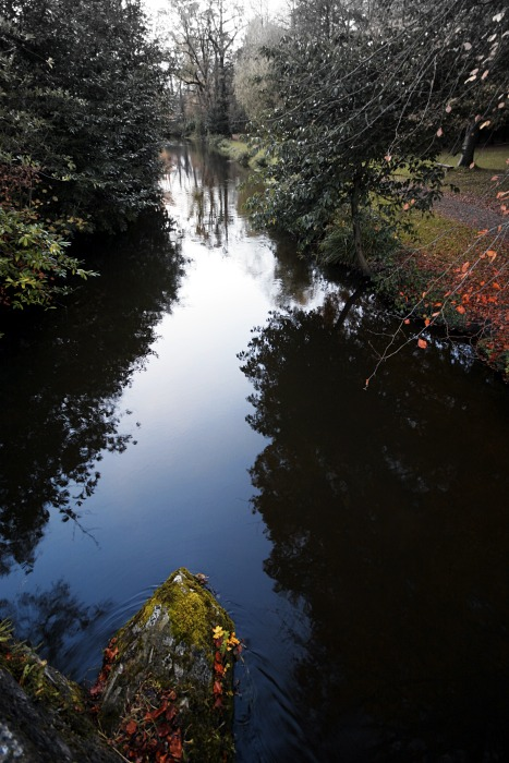 Doneraile Park Stream