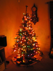 Our Christmas Tree 2006