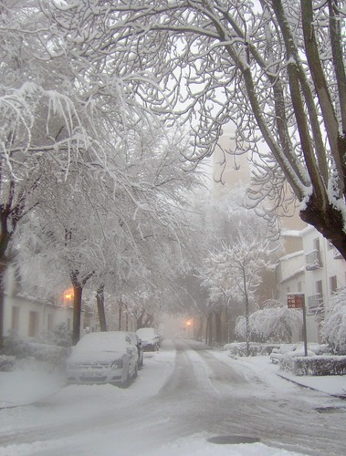 Free Snow Falling Live Wallpaper 27 Reasons To Bring Your Camera Out When It Starts Snowing