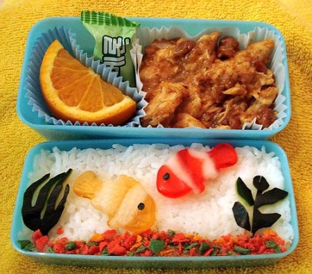 Aquarium Bento, top view