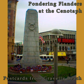 Pondering Flanders at the Cenotaph - Postcard #43