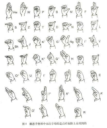 Chinese Sign Language Fingerspelling Sinosplice