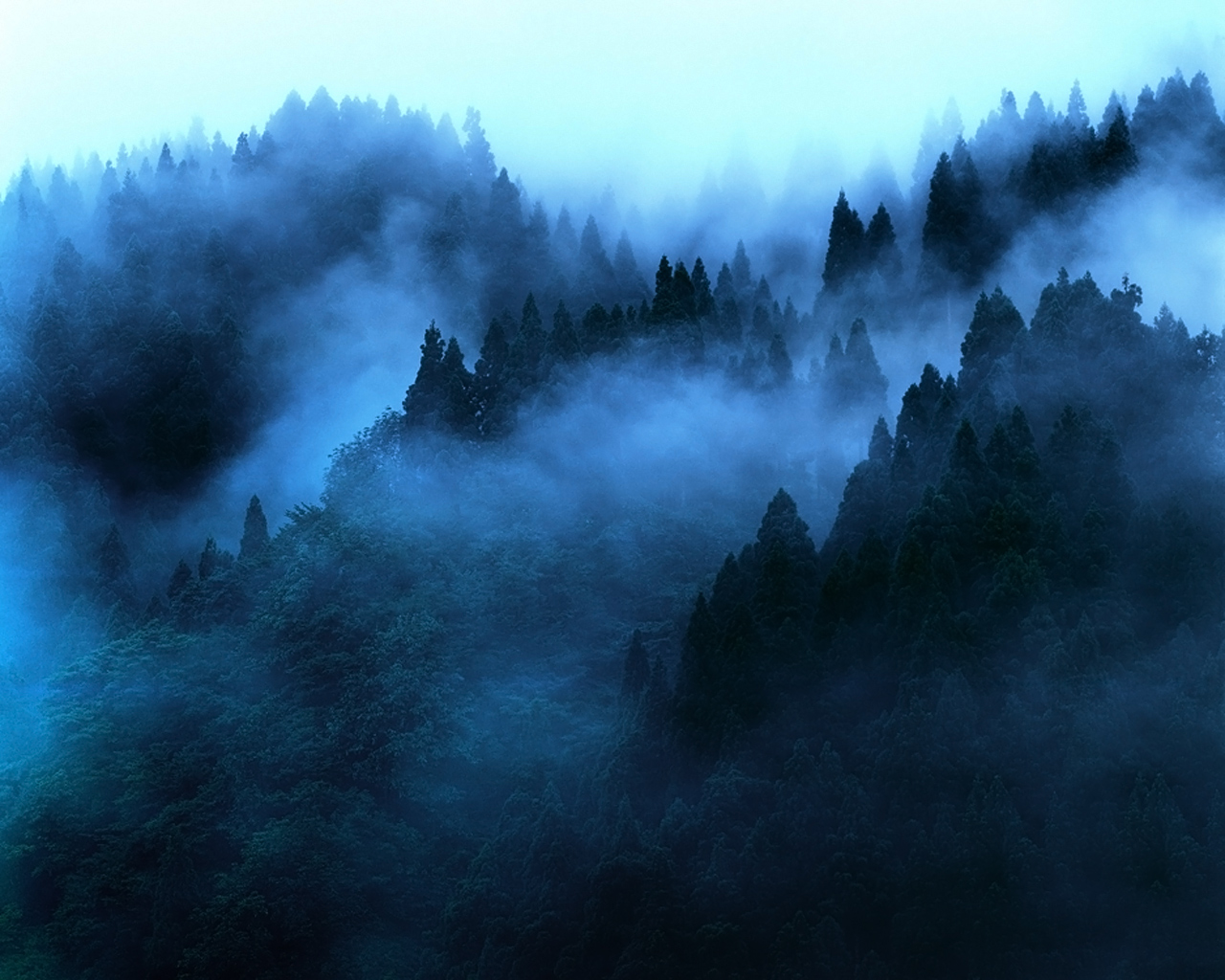 Bing Hd Wallpaper Fall Blue Morning Mist You Re Safer From Male Serial Killers
