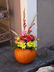 Sandy's Pumpkin