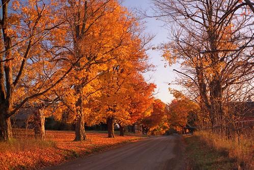 Tahquamenon Falls Michigan Winter Wallpaper 10 Fall Favorites In Northern Michigan Mynorth Community