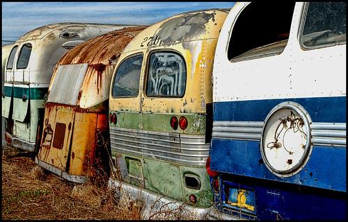 Bus Graveyard