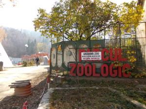 Noi amenajări la Zoo Brașov