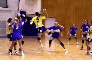 Centrele de excelență în handbal și educație rămân, deocamdată, la stadiul de discuție