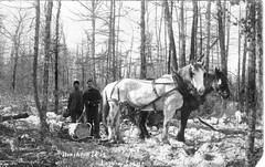 Logging Camp - Northern Wisconsin