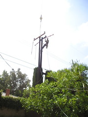 Man Attaching Wires to Pole