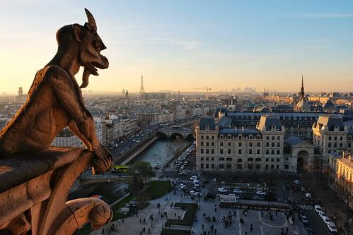 Notre-Dame gargoyles