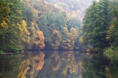 """The River Thaya-Dyje in Autumn • <a style=""""font-size:0.8em;"""" href=""""http://www.flickr.com/photos/22289452@N07/21899136358/"""" target=""""_blank"""">View on Flickr</a>"""