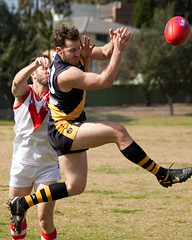 AFL-St-George-Dragons-v-Balmain-Tigers-0012
