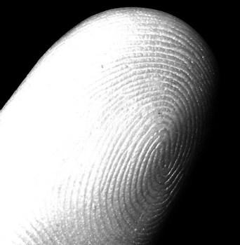 Biometrics offer fingerprint security