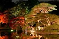 Japanese garden at night #2 | Explore * Yumi *'s photos on ...