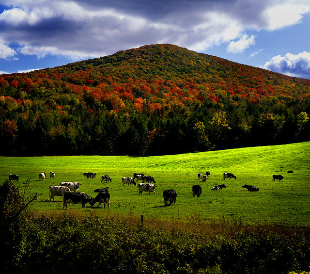 Vermont Fall Farm Wallpaper Vermont Landscape A Gallery On Flickr