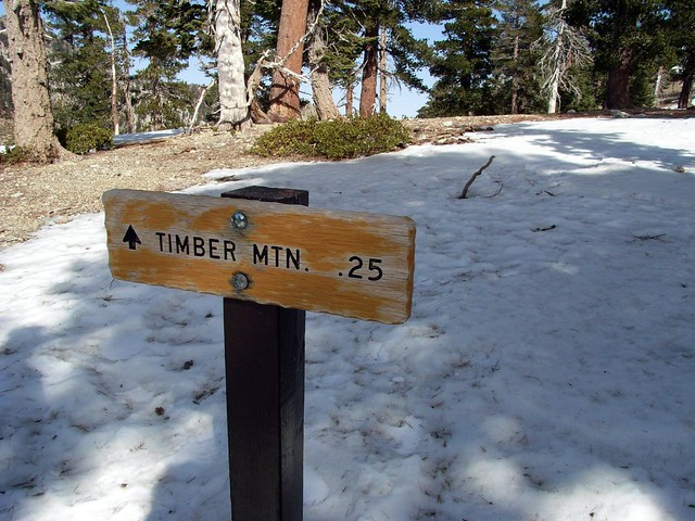 That Way to Timber Mountain