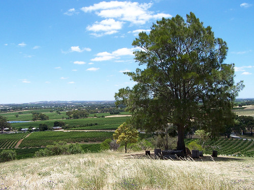 Barossa Valley (Australia)