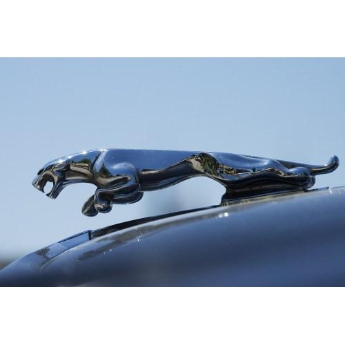 Medium Crop Of Jaguar Hood Ornament