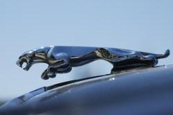 Small Of Jaguar Hood Ornament