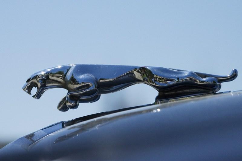 Large Of Jaguar Hood Ornament