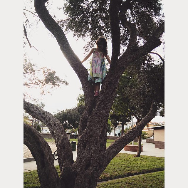 No tree is tall enough. #girlinatree