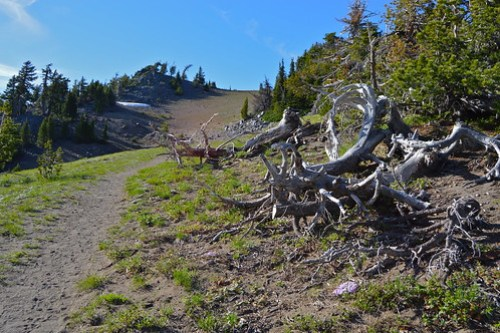 craterlake-hiking-path