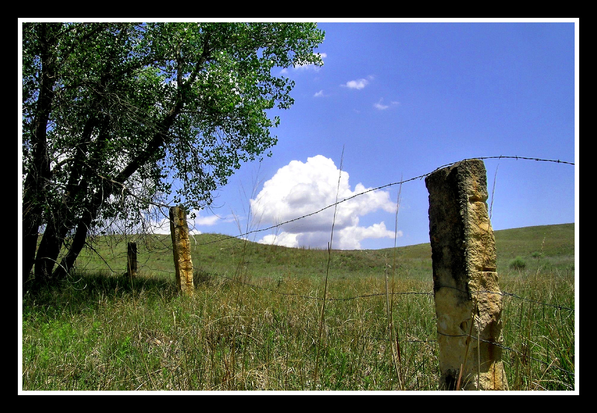Piketpaaltjes Gamma Limestone Fenceposts And Prairie Flickr Photo Sharing