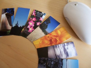 Moo MiniCards with Mouse