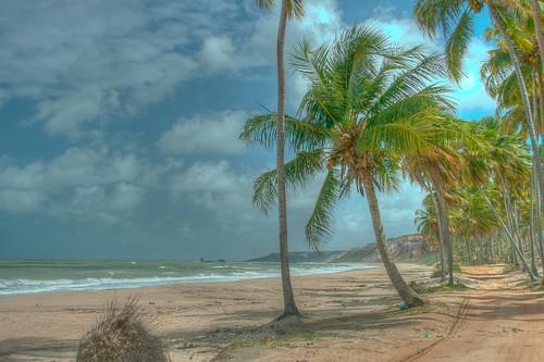 Praia Coqueirinhos, Paraíba, Brasil.