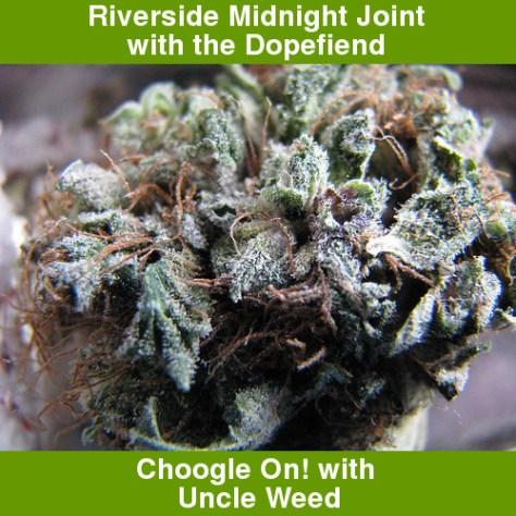 Midnight Riverside Joint