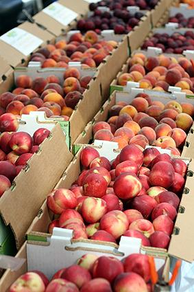 peachesnectarines.jpg